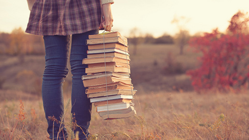 literature_500