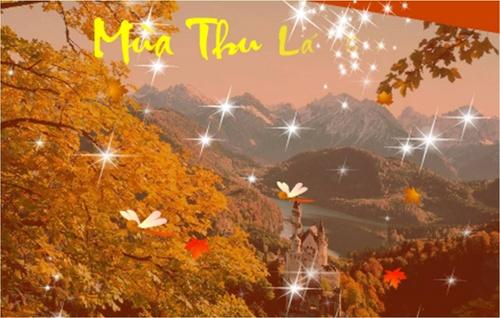 Chùm thơ thu của Phong Roi Nguyen
