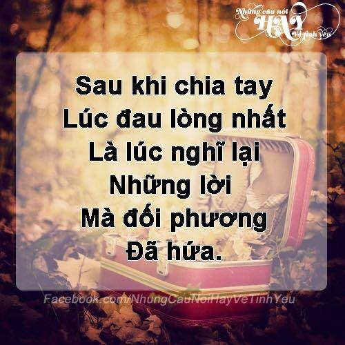 loihua_500