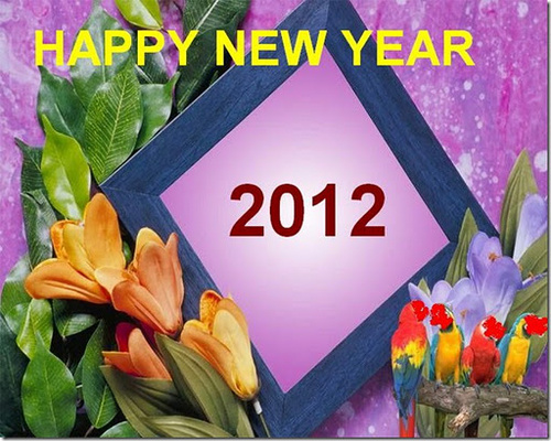 happy_new_year_2012_wallpapers5_500
