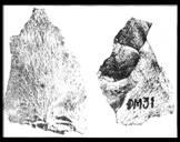 Lịch Sử 6 - BÀI 10: NHỮNG CHUYỂN BIẾN TRONG ĐỜI SỐNG KINH TẾ