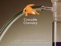 crocodilechemistry1_120