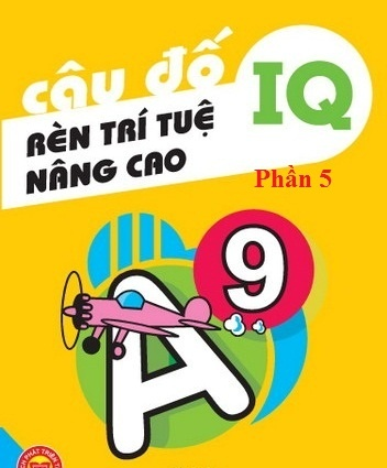 cau-do-ren-tri-tue_-nang-cao-iq-5