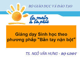 pp_btnb_mon_sin_hoc
