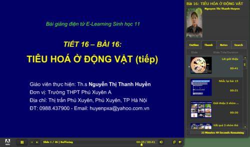 tiu_ha__ng_vt_tip_theo__500