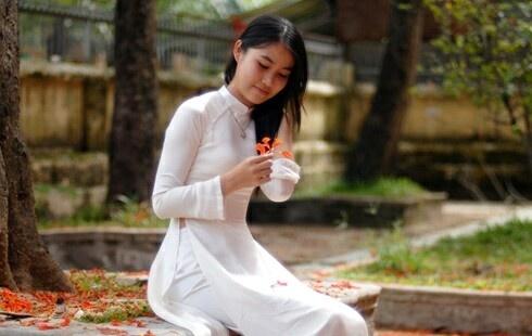 muahoaphuong-01