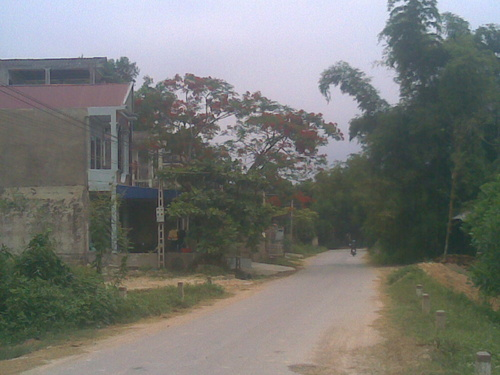 phuongvi25062010023_500