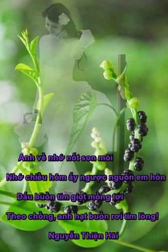 thuha-vetmongtoi3_500