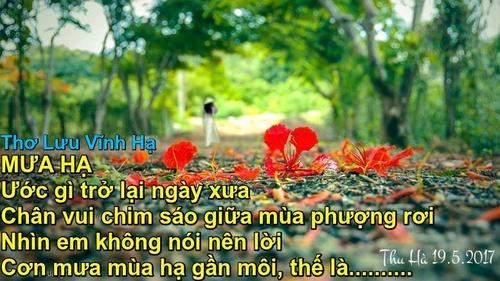 thuha_500_42