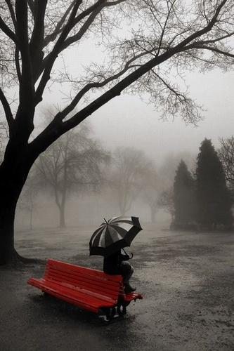 1283467192_rainy-day_500_01