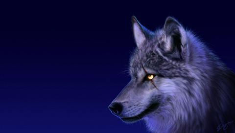 brave_injured_wolf